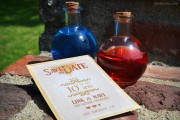 Legendary Save the Date - better than a health potion!